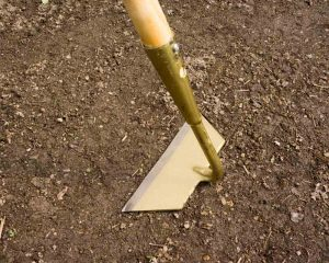 SHW Slicing Hoe Main Angle - Best weeding tool for veggies