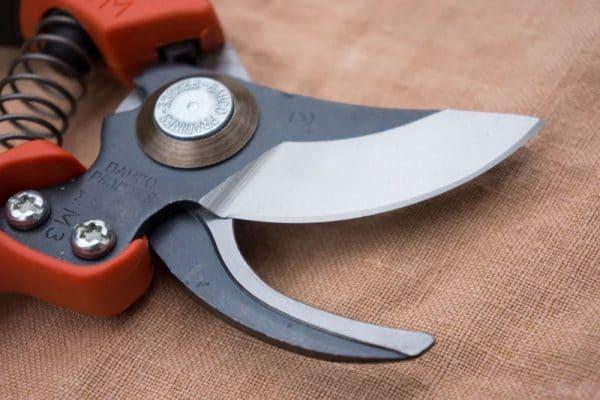 Bahco Pruners - Ergo PX Series Blade
