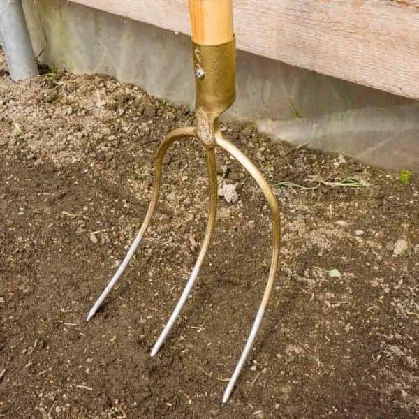 SHW 3 Tine Hay Fork 3